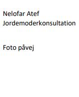 Nelofar Atef